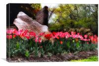 Tulip Garden on a Rainy Day, Canvas Print