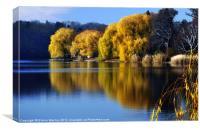 November Pond, Canvas Print