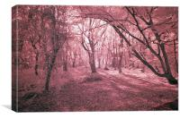 Infra Red Bentley Woods Stanmore, Canvas Print