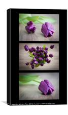 Purple tulips triptych, Canvas Print