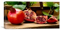 Pomegranates, Canvas Print