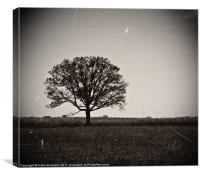 One Tree Stands Alone, Canvas Print
