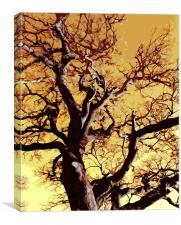 Cutout tree wall art, Canvas Print