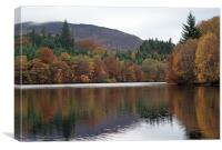 Autumn in Pitlochry, Canvas Print