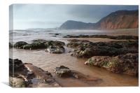 Looking West from Sidmouth, Canvas Print
