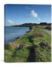 A walk to Hengistbury Head, Canvas Print