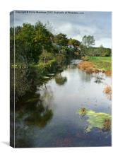 River Stour at Spetisbury Dorset, Canvas Print