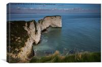 Old Harry, Canvas Print