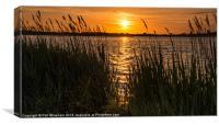 Harbour Sunset, Canvas Print