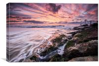 Branksome Sunrise, Canvas Print