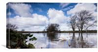 Swan on the Stour, Canvas Print