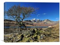 Blaven across Loch Slapin,Skye., Canvas Print