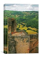 Chateau de Najac 2