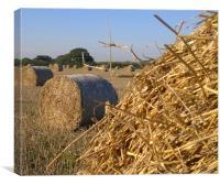 Make Hay...., Canvas Print