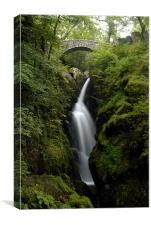 Aira Force Water Fall, Canvas Print