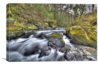 Ballaglass Glen, Canvas Print