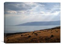 The Galilee's Lake, Canvas Print