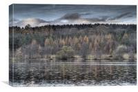 Steam Mills Lake, Canvas Print