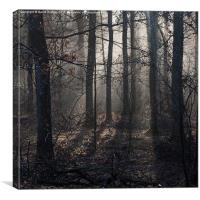 Misty Dean, Canvas Print