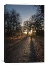 Cycle Path Sunrise, Canvas Print