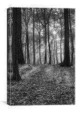 Bradley Hill Sunrise, Canvas Print