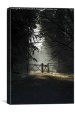 Sunlit Gateway 2, Canvas Print