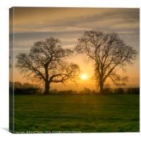 Winter Sunrise 3, Canvas Print