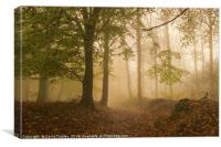 Alone in the Mist, Canvas Print