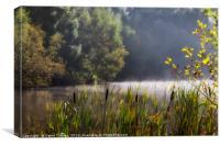 Autumn Mist at Mallards Pike, Canvas Print