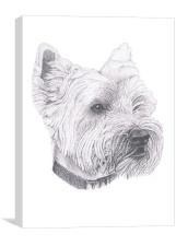 West Highland Terrier, Canvas Print
