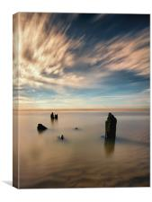 Normans Bay Wood, Canvas Print