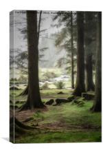 Into the mystic, Canvas Print