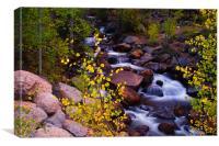 Colors Of Geneva Creek, Canvas Print