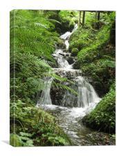 Canonteign Falls, Canvas Print