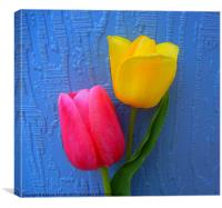 Tulips on Blue, Canvas Print