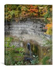 Tews Falls in Autumn, Canvas Print