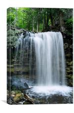 Hilton Falls, Canvas Print