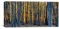 Autumn sunset , Canvas Print