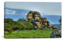 Vixen Tor / The Sphinx of Dartmoor