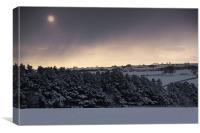 Snow Storm, Canvas Print