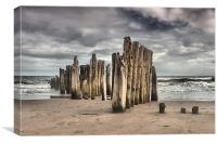 Wooden Posts, Canvas Print