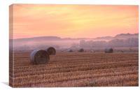 misty morning 1, Canvas Print