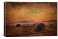 textured misty morning 2, Canvas Print