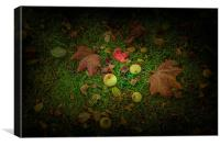 Apples and Leaves, Canvas Print