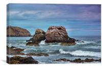 Seagull Rock 2, Canvas Print
