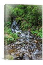 Burrator falls, Canvas Print