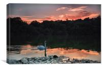 Decoy Lake, Canvas Print