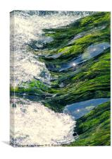 River Rush, Canvas Print
