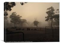 Australian Farm Morning Mist, Canvas Print