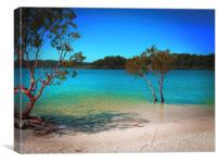 Lake Mckenzie Bliss, Canvas Print